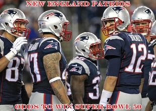 new england patriots odds to win 2015 2016 super bowl 50